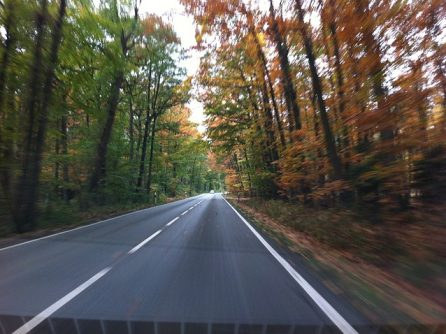 Hogyan közlekedj biztonságosan ősszel is?